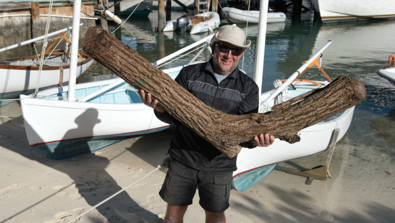 Locally grown corkwood provides crooked timbers for dinghy frames.