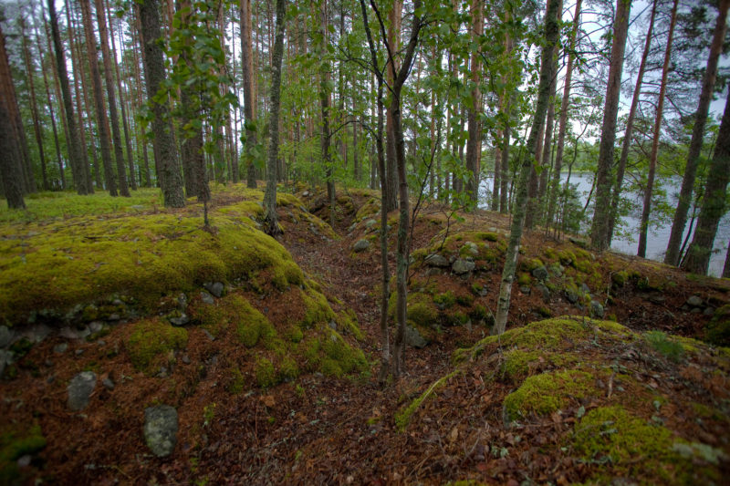 These eroded trenches by Pistilan Lake were a part of the Salpa Line defenses built against the Soviet threat in the early 1940s. The line never saw military action, but was nonetheless a haunting reminder of the battles fought by our grandfathers farther east.