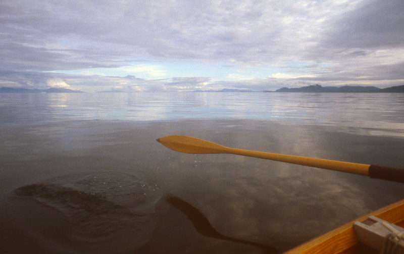 Unusually calm conditions gave us an opportunity to make a quick afternoon crossing to Admiralty Island.
