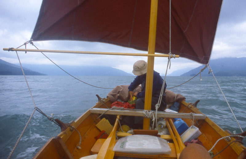 We got a good ride north from Whaletail cove with wind and tide in our favor. We sailed 8 miles before the wind died and we had to row the last 12 miles to Wrangell.