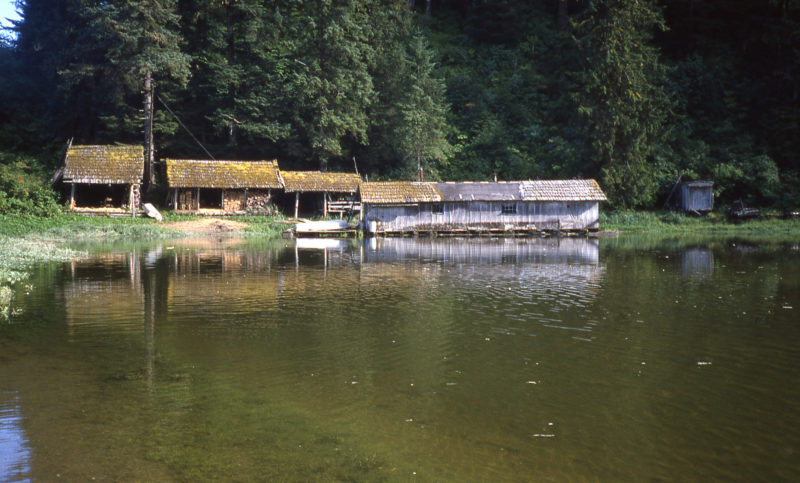 Stan built his home on a log raft that floated at high tide in the backwaters adjacent to PAck Creek. Stan died in 1989 and little remains of his home. The area is now the Stan Price State Wildlife Sanctuary.