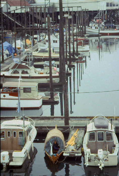 When we stopped in Petersburg the harbormaster didn't charge us for moorage because we had no motor. It rained all night but we were quite dry under the canopy.