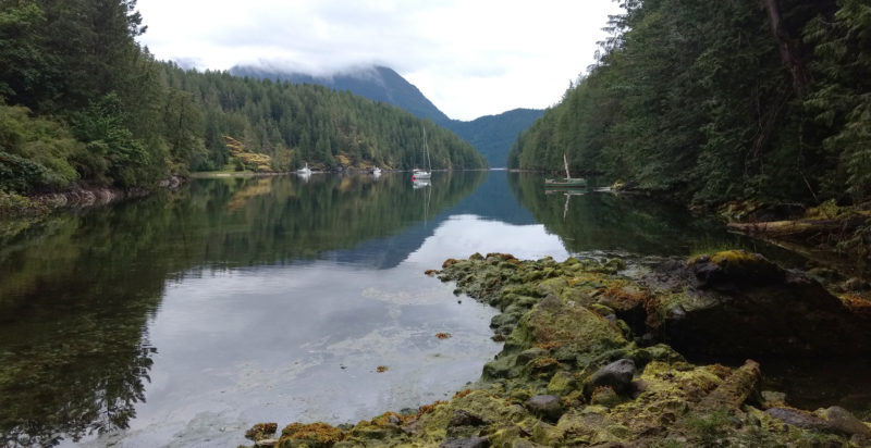 We anchored in the still waters of Roscoe Bay on West Redonda Island. We were lured by the promise of a short walk along a trial to Black Lake where we could bathe in fresh water. The walk turned out to 20 minutes of bushwhacking.