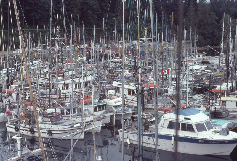 Port Hardy was home to a large fishing fleet. I was considering bringing an end to my voyage here, but chance encounters led to continuing.