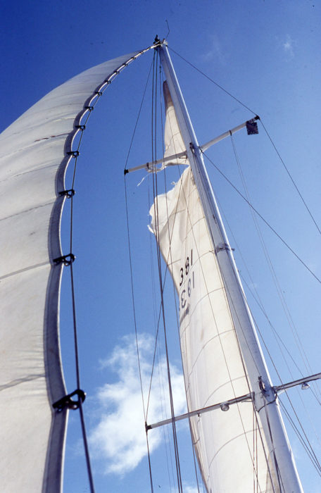 The strong wind tore RAINBOW's mainsail and bowed her forestay.