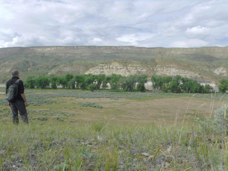 After I braved the herd of aggressive cattle, I had an expansive view of the river valley. My campsite is in the center, nestled among the cottonwood trees.
